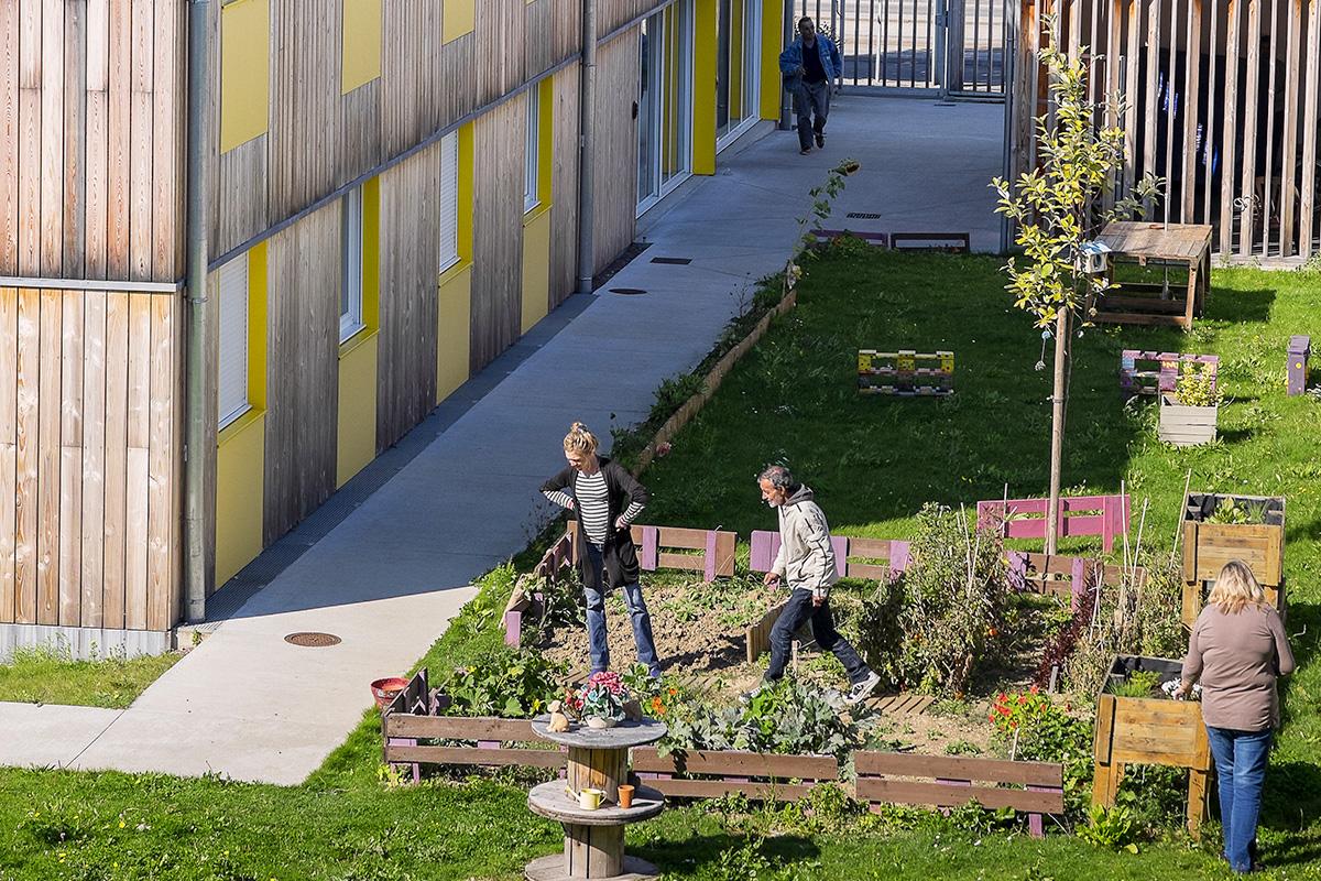 3 personnes s'affairant dans un jardin potager installé au pied d'un logement social